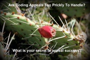 Coding Appeals